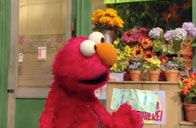 The Truth About Money Interview with Elmo